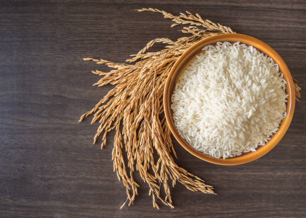 raw white rice (thai jasmine rice)  in brown bowl and and ear of rice or unmilled rice on wooden background - riso cereale foto e immagini stock