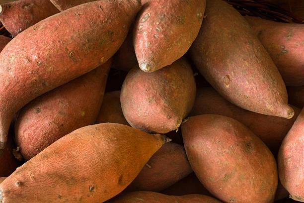 surowe ignamy, słodkie ziemniaki, całe, świeże zdrowe warzywo korzeniowe - słodki ziemniak zdjęcia i obrazy z banku zdjęć