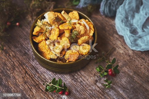 istock Raw wild mushrooms chanterelles in bowl on old wooden background. 1019957704