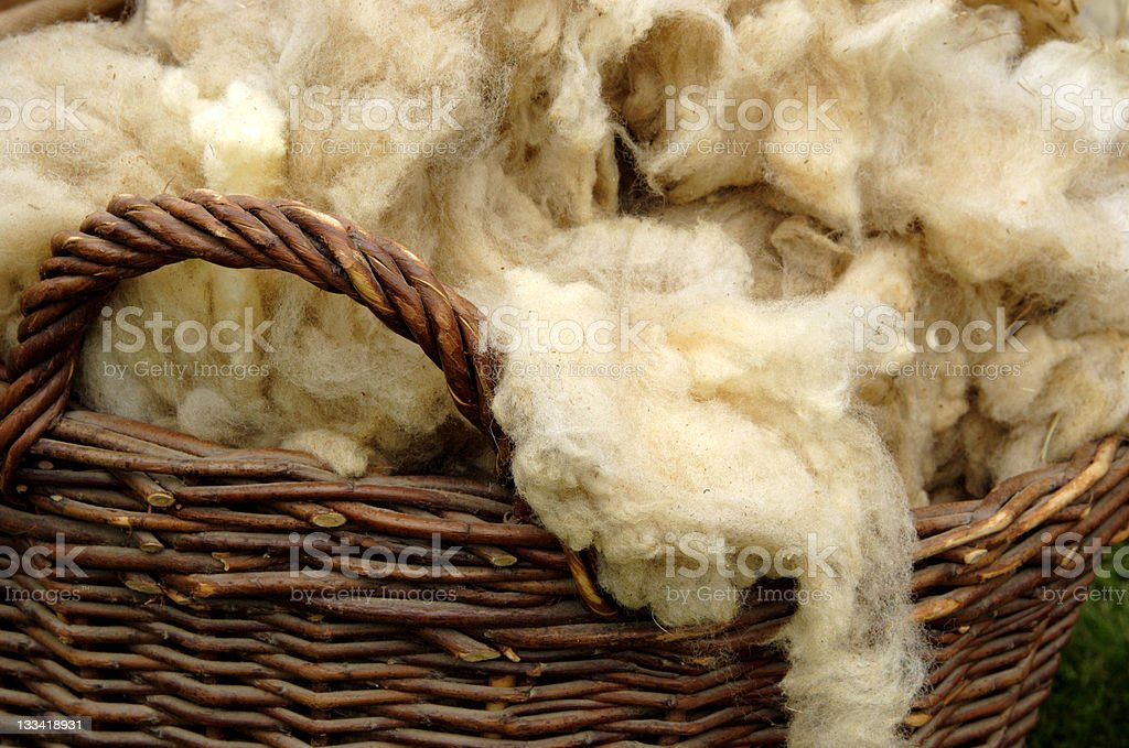 Raw wool royalty-free stock photo