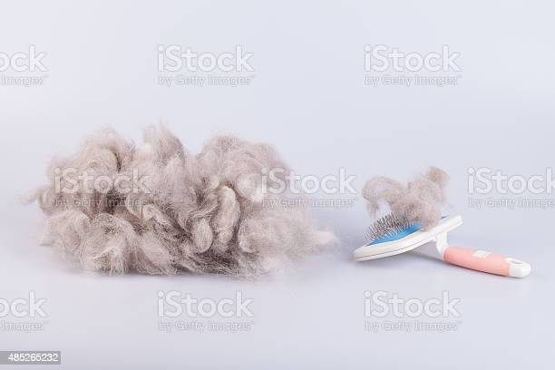 Raw wool yarn coiled into a ball picture id485265232?b=1&k=6&m=485265232&s=612x612&h=almh6rnhpmw2zhezgfi efmy2r6y6a2xw0fi9f1 vjs=