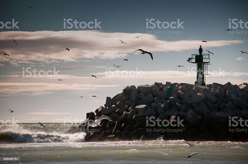 rawson argentina puerto con gaviotas y faro - foto de stock