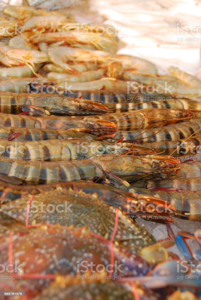Rawv Asian tiger shrimp laying on ice. royalty free stockfoto