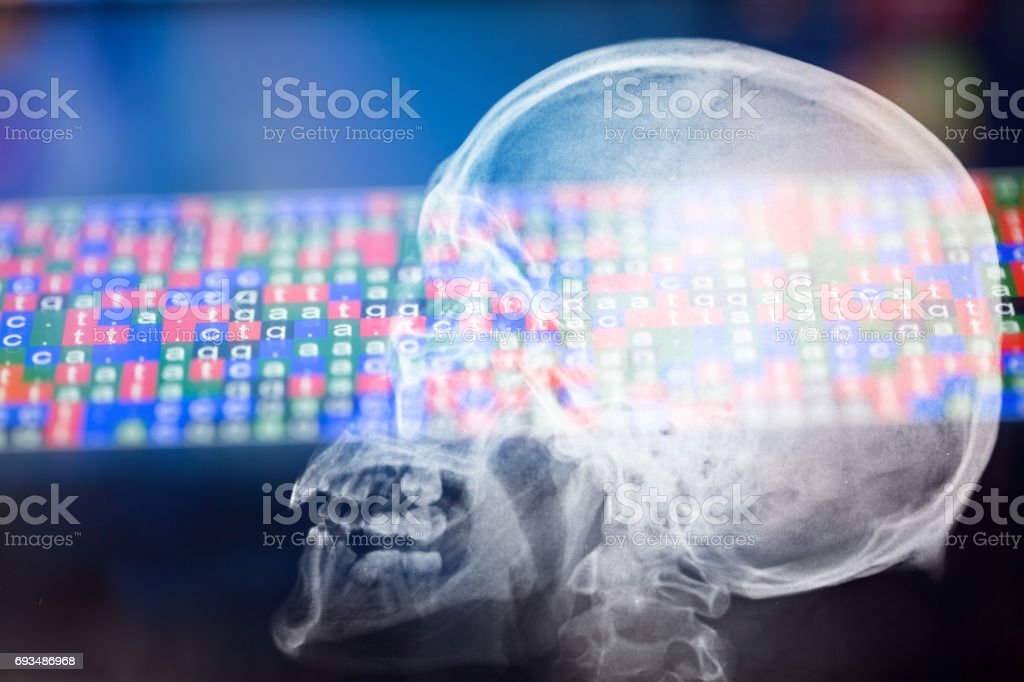 X ray of Skull with DNA color coded sequence stock photo
