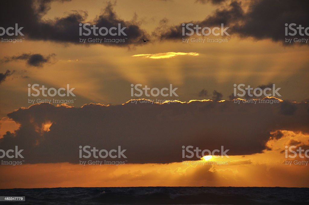 Rays of Beautiful Sunlight stock photo