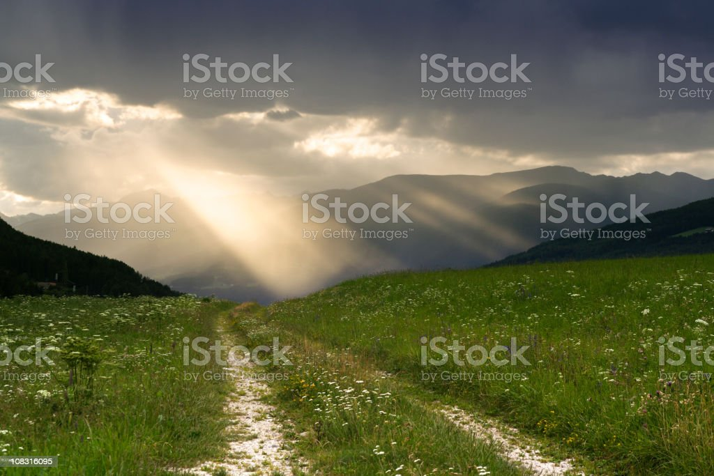 Rays of sunlight stock photo