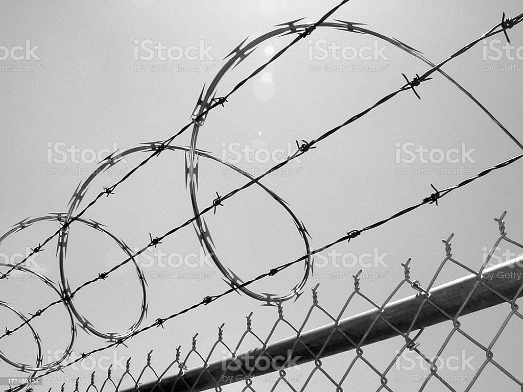 Razor Wire Above a Fence stock photo