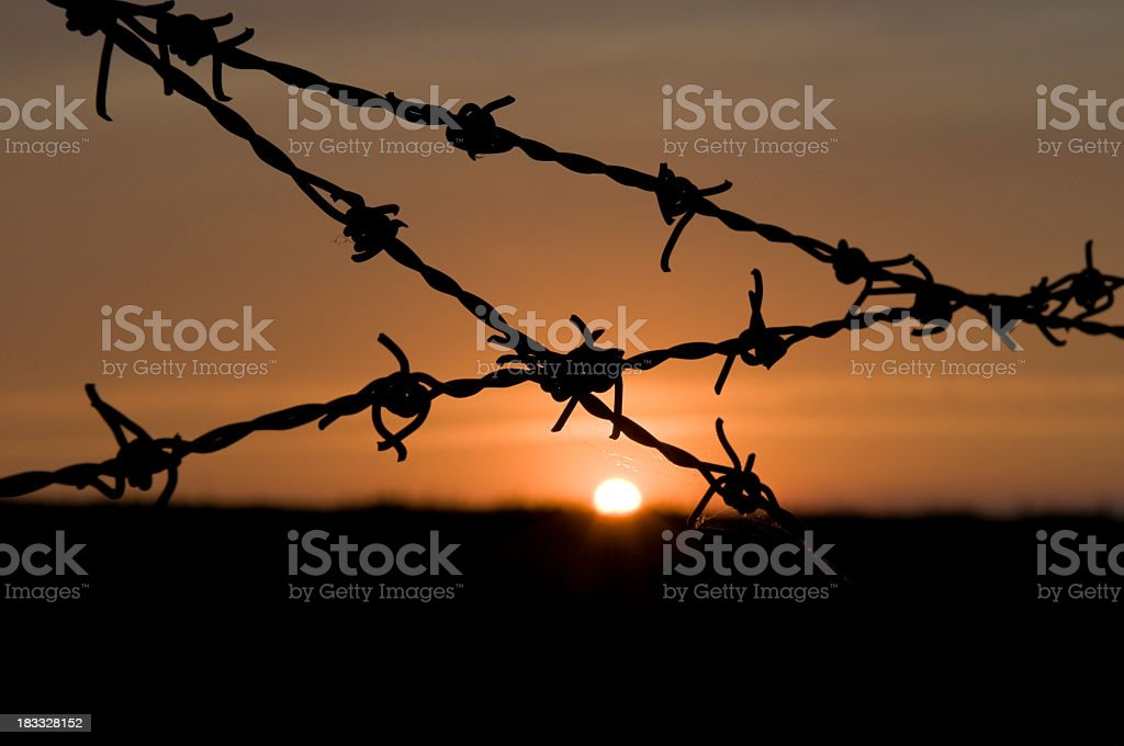 Razor wire and sunset royalty-free stock photo