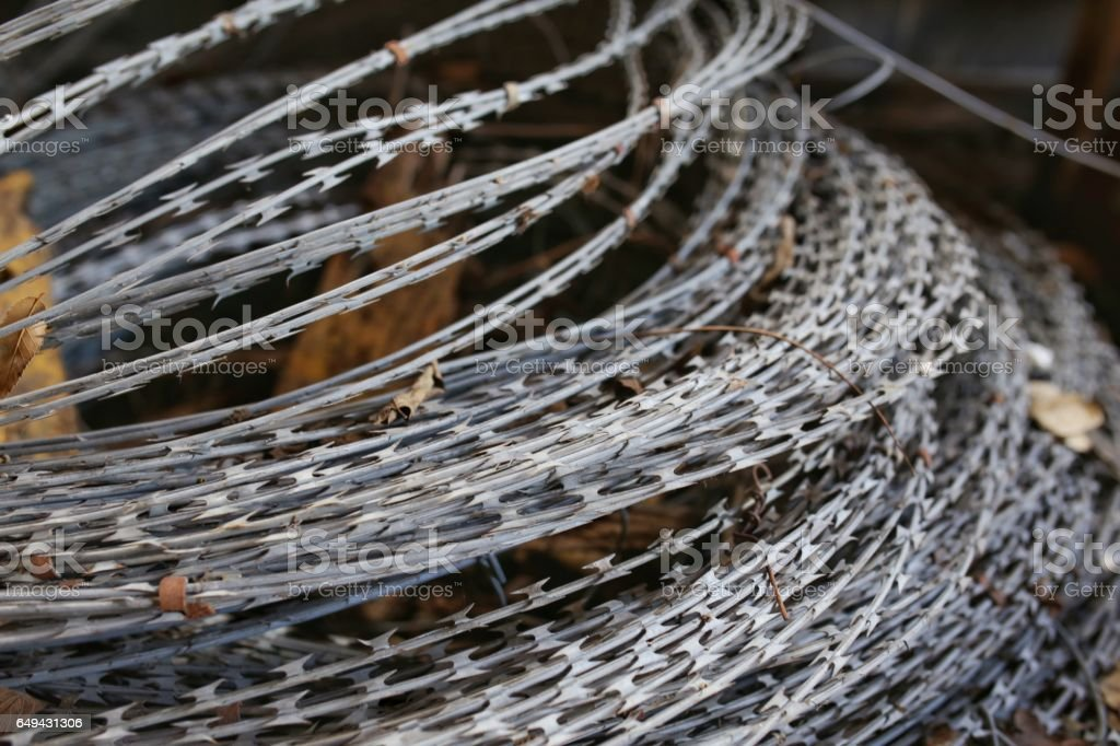 Razor Wire Barbed Ribbon Security Fencing Stock Photo & More ...