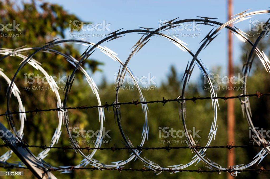 Razor wire fence shining in the sun stock photo