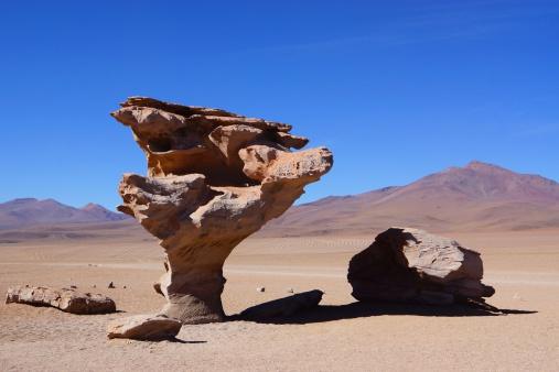 Árbol de Piedra - Stone Tree in Bolvia