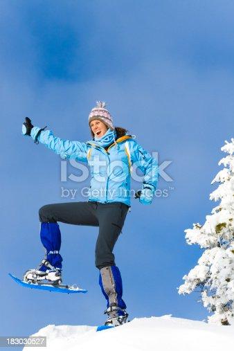 500150419istockphoto reached the summit 183030527
