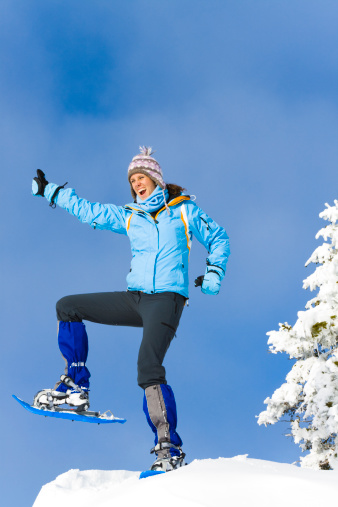 500150419 istock photo reached the summit 183030527