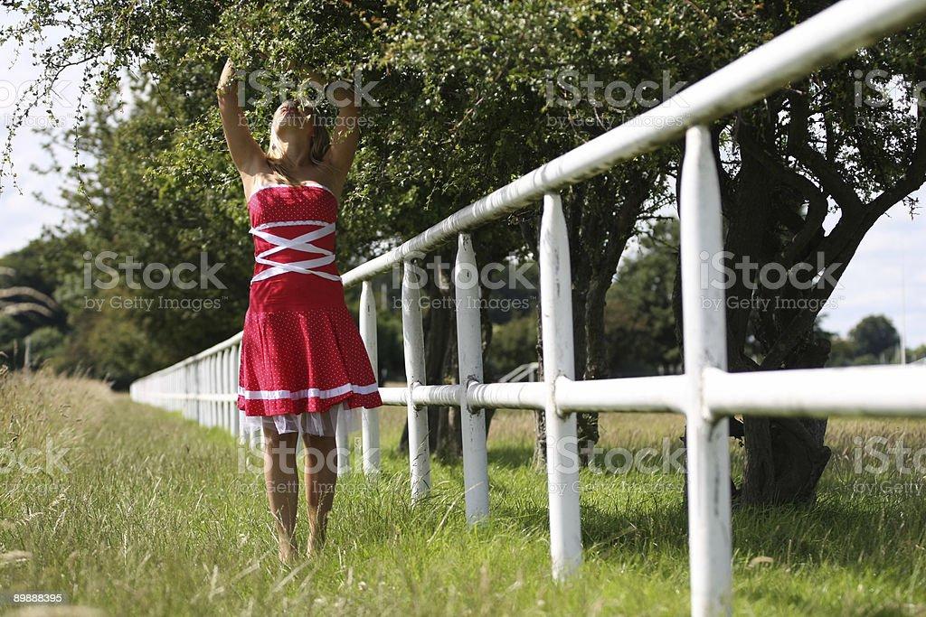 Reaching royalty-free stock photo