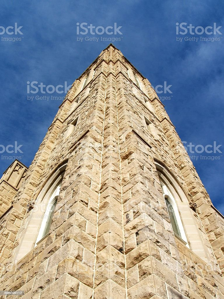 Reaching Up to Heaven royalty-free stock photo
