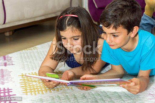istock Reading a book at home 1214751634
