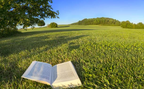 Lesen Sie ein Buch in einem Park in der Natur, Punkt-von-Ansicht-Shot. In Bayern, Deutschland. – Foto