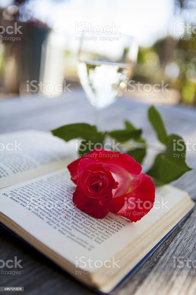 Reading and Roses stock photo
