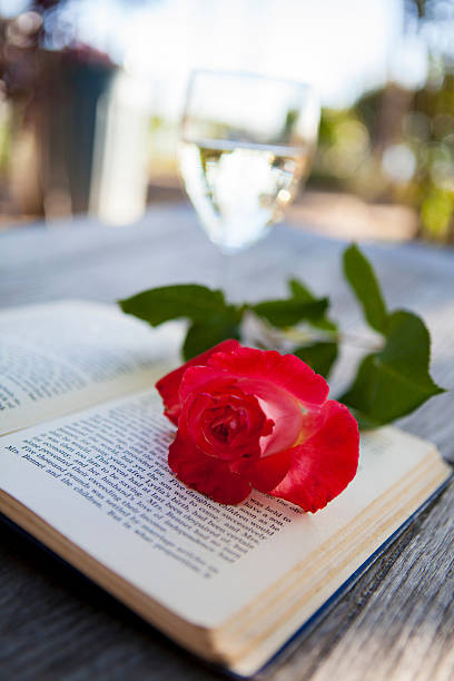 Reading and Roses