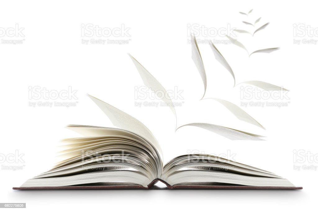 Reading Book Concept Winged Pages stock photo