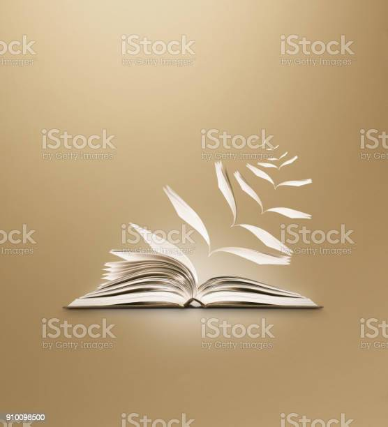 Reading book flying pages brown background picture id910098500?b=1&k=6&m=910098500&s=612x612&h=kjv9oce76ip7vc4lmiy hlcii6uwmxoyjgzxhr p8ko=