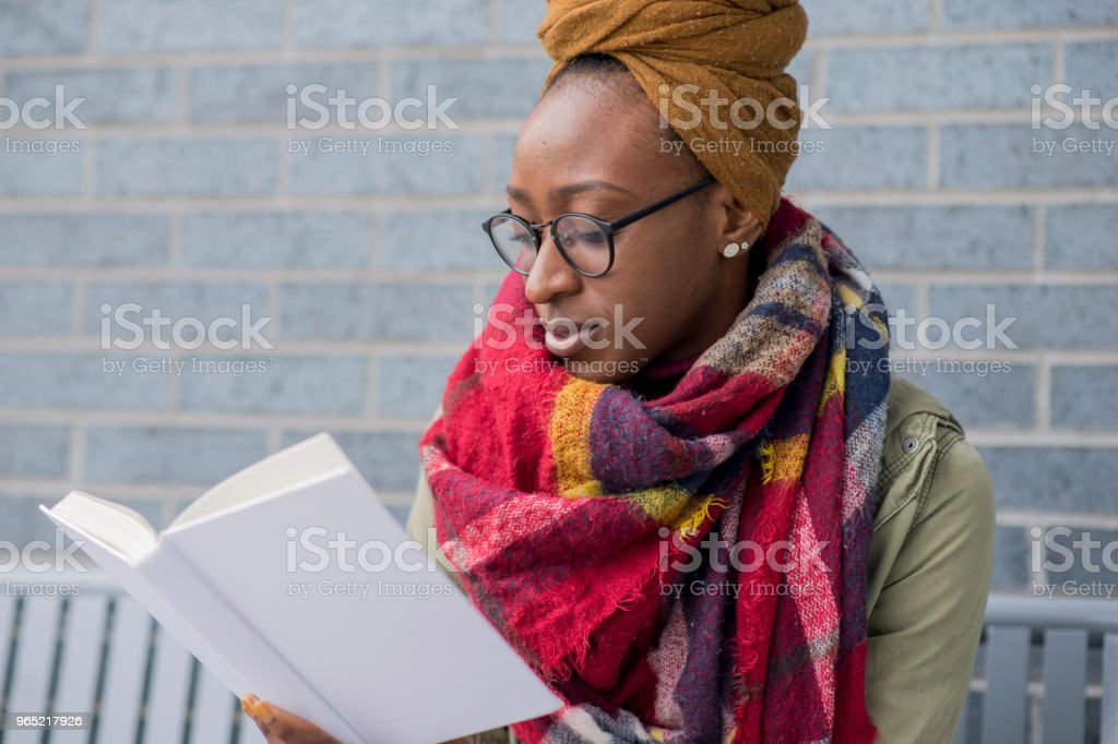 Reading Downtown royalty-free stock photo