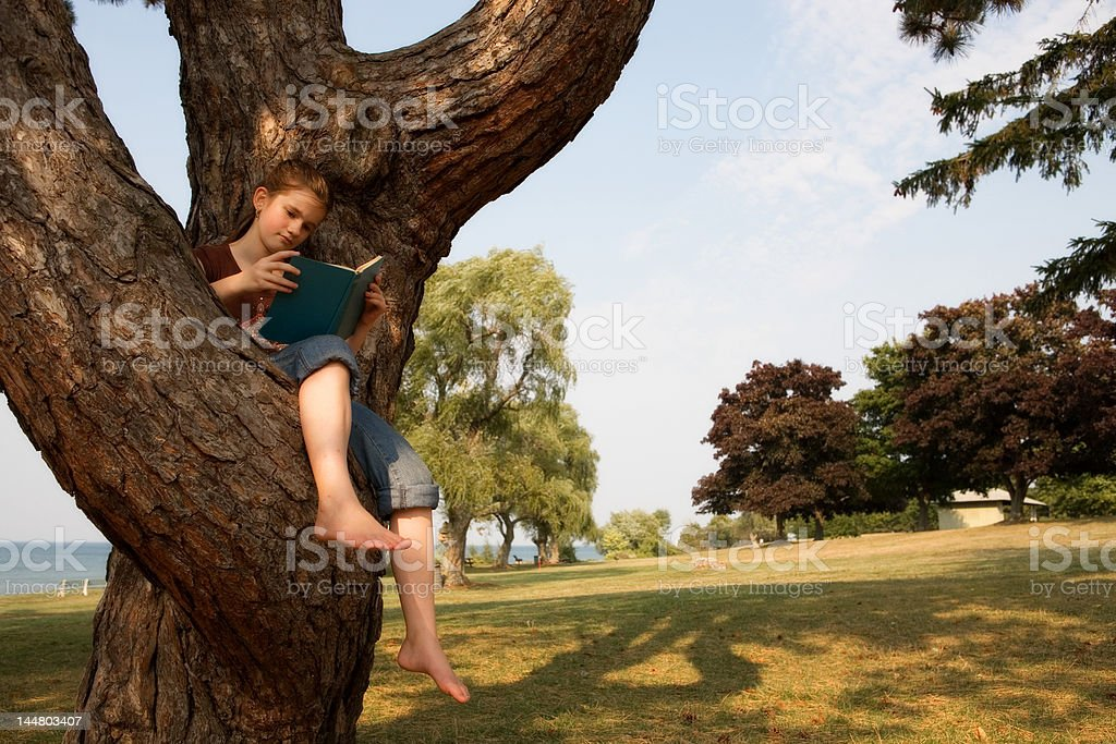 Reading in a Tree stock photo