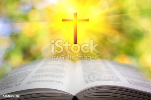 istock Reading the Bible 540568010