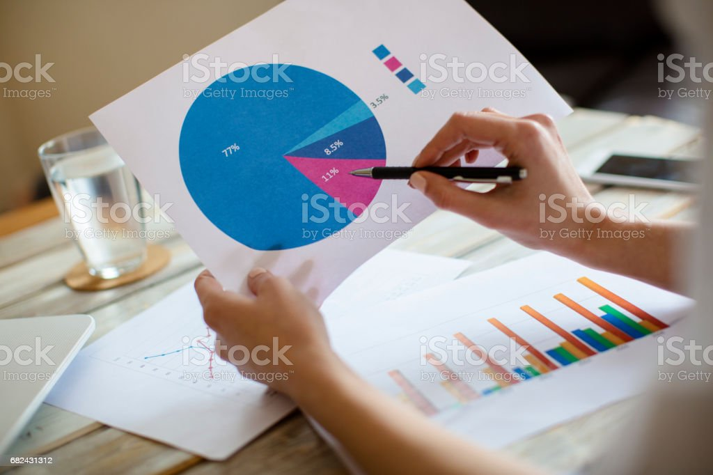 Reading the pie chart royalty-free stock photo