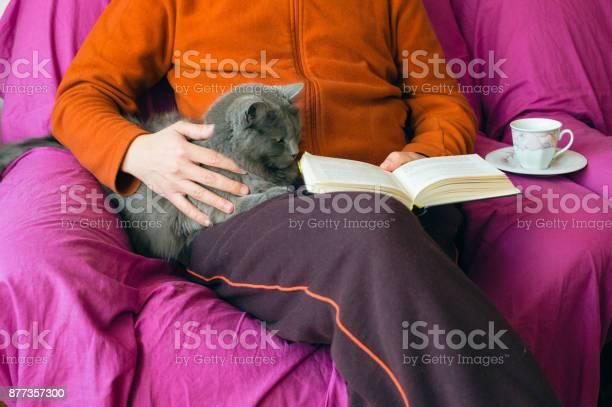 Reading time with a cat picture id877357300?b=1&k=6&m=877357300&s=612x612&h=kutudmqie1oukxroxerkd besg7bubay1apyglsli0e=