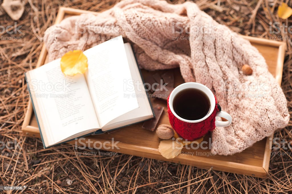 Reading with cup of tea outdoors stock photo
