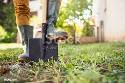 Close-up shot of an unrecognizable gardener standing in his backyard with shovel pinned to the ground.