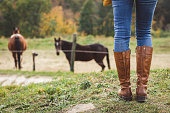 Woman wearing riding boot and jeans is standing at ranch. Leisure activity outdoors