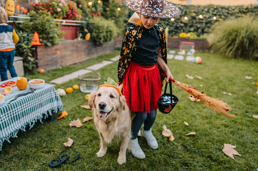 istock Ready for some trick or treating 1178984340