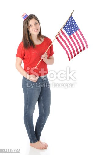 istock Ready for the Fourth 481415393