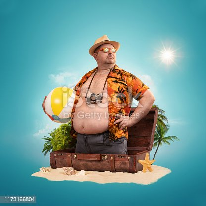 istock Ready for the holidays, travel concept 1173166804