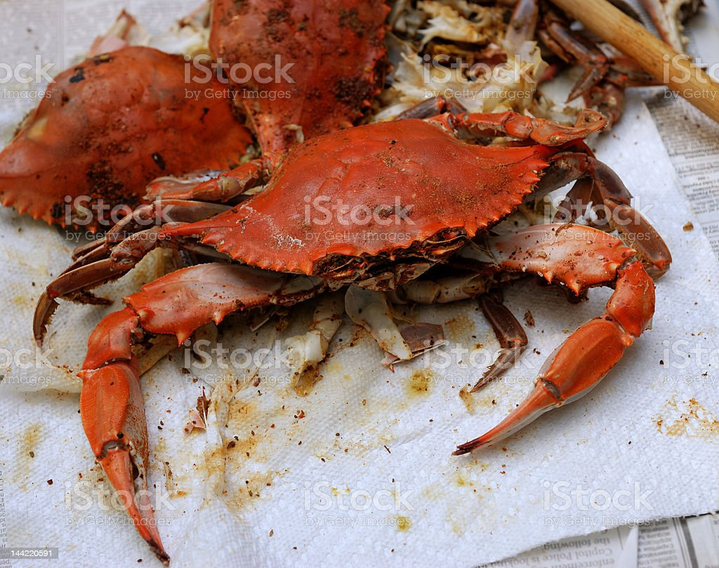 Ready to Eat Maryland Blue Crab stock photo