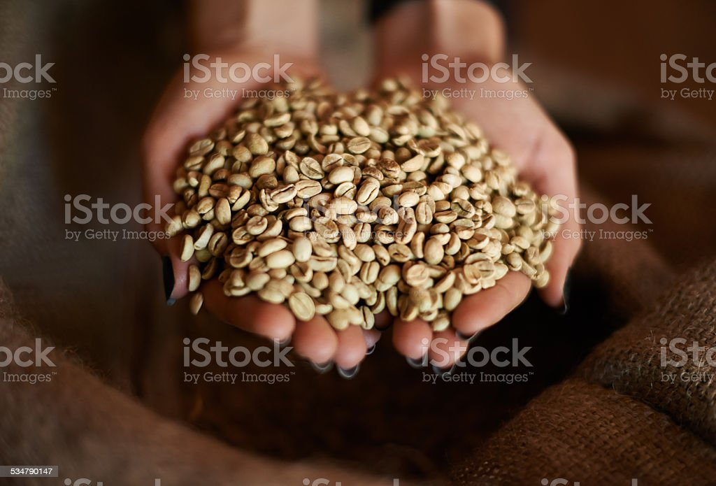 Ready to get roasted stock photo