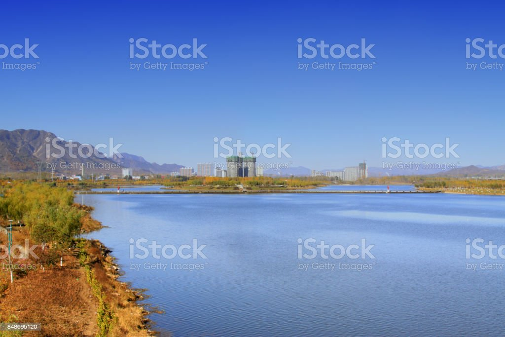 real estate and green plant in a park by the river stock photo