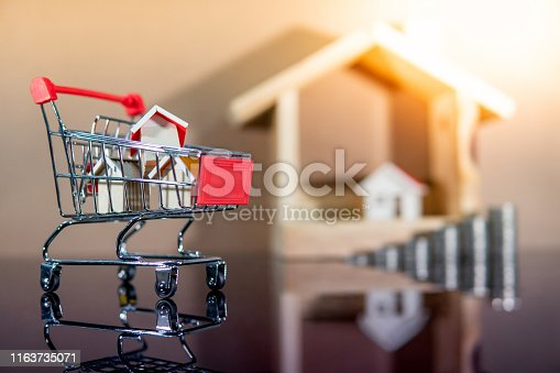 istock Real estate investment. Buying property concept 1163735071