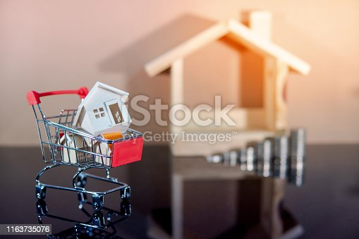 istock Real estate investment. Buying property concept 1163735076
