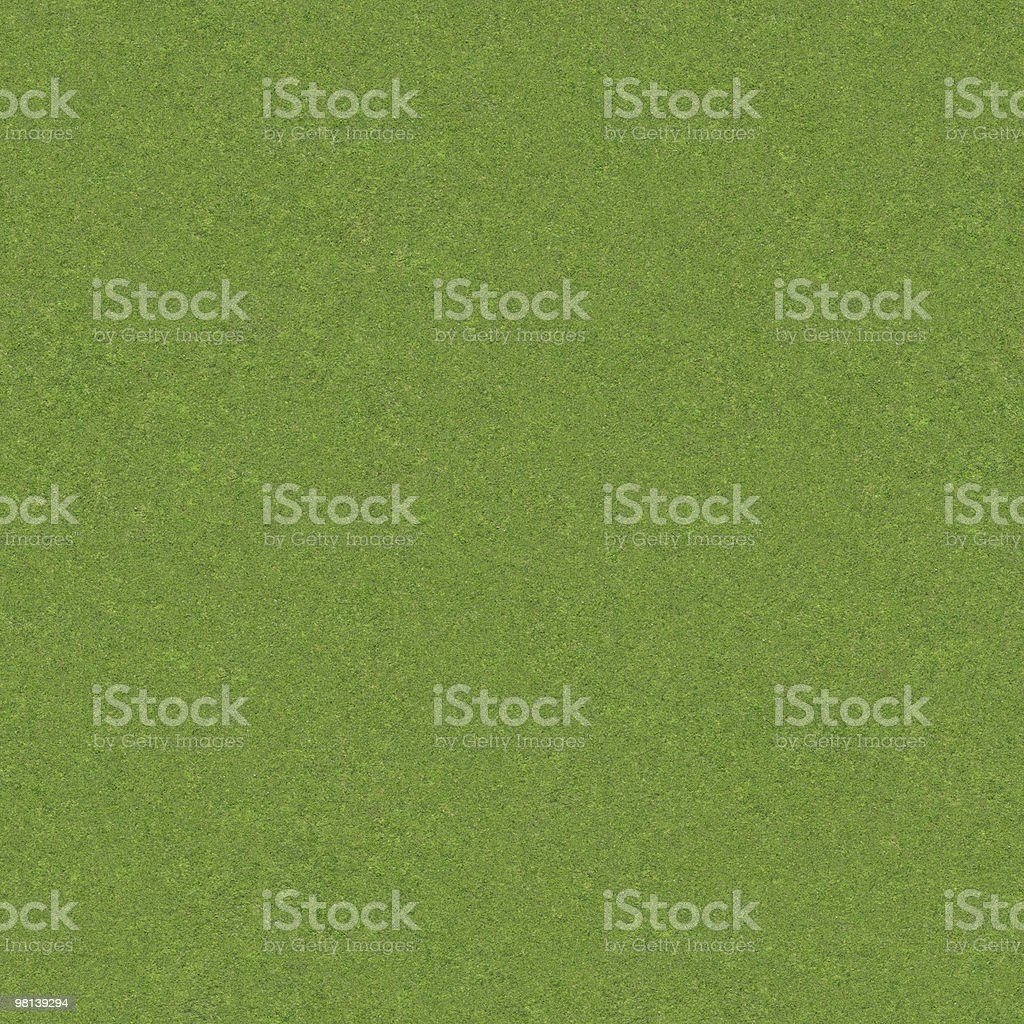 Real Grass - Fine royalty-free stock photo