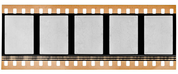 real high res scan of 35mm film material or movie strip on white background with empty frames or cells - albuns fotografias recorte imagens e fotografias de stock