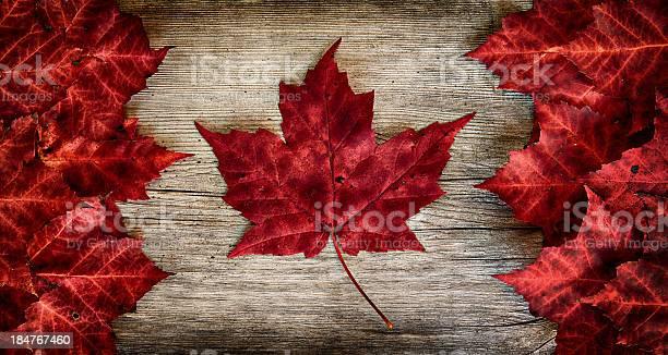 Photo of Real Leaf Canada Flag on Weathered Cedar