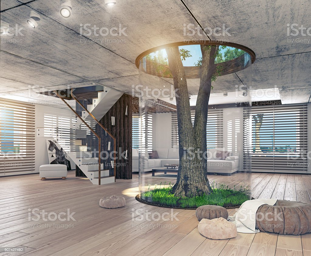 Real living tree indoor concept stock photo