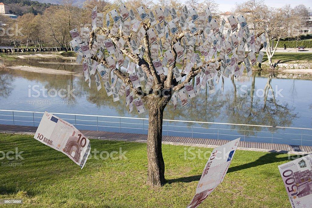Real Money Tree royalty-free stock photo