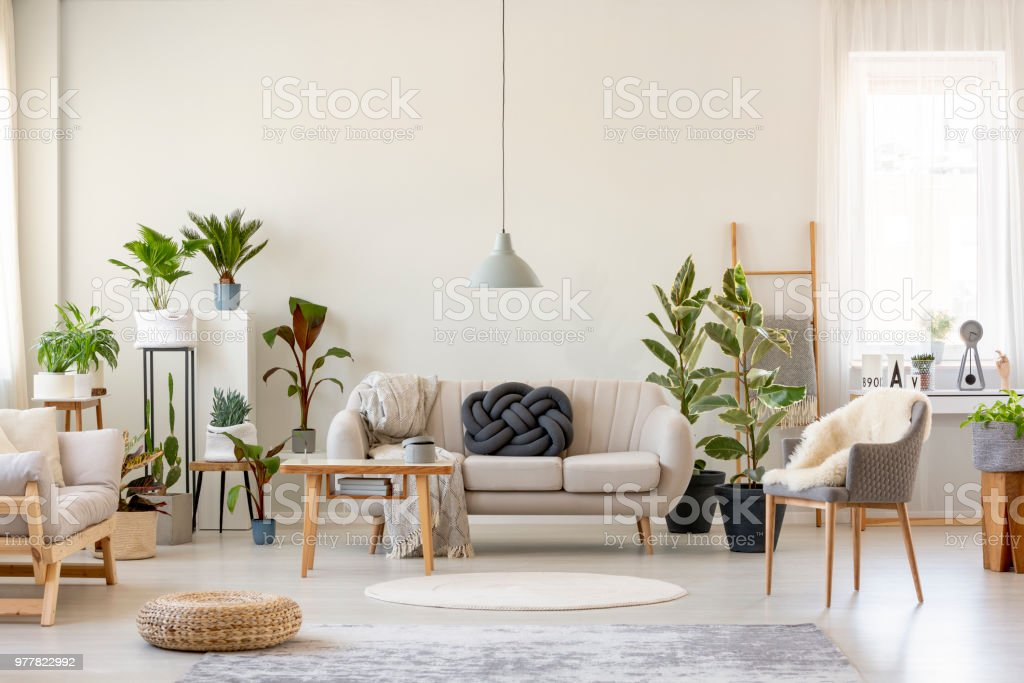 real photo of a botanic living room interior full of
