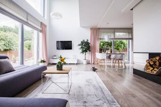 echtes foto von einem essbereich, tv und graue couch im offenen raum wohnzimmer interieur - katzenschrank stock-fotos und bilder