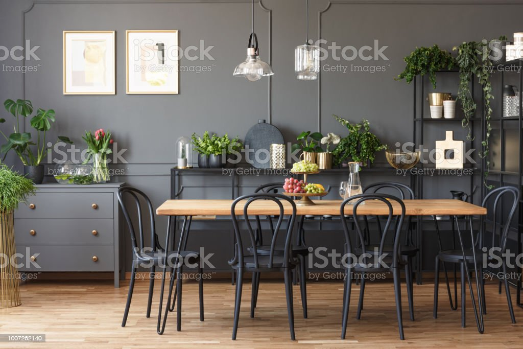 Real photo of a gray and black dining room interior with posters on a dark wall with molding, lamps above wooden table and plants on metal racks stock photo