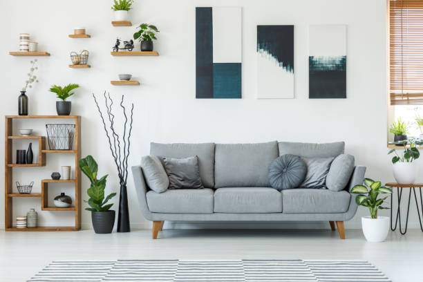 real photo of an elegant living room interior with a comfy couch, paintings and shelves - home decor stock pictures, royalty-free photos & images